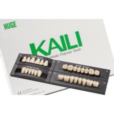 Kaili зубы фронтальные 6шт/планка, Huge Dental