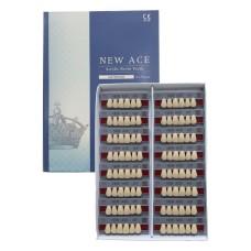 New Ace зубы фронтальные 6шт/планка, Yamahachi